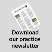 Download The Broad Lane Vets Newsletter