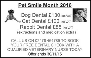 Pet Smile Month