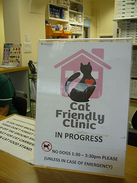 Cat Friendly Gold Practice Coventry